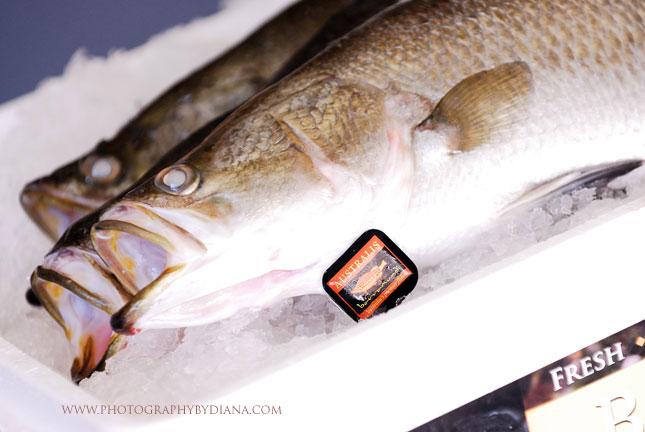 Is barramundi high in mercury for Fish with high mercury